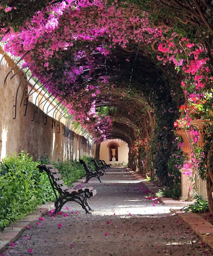 15 самых волшебных улиц мира, укрывшихся в тени цветов и деревьев