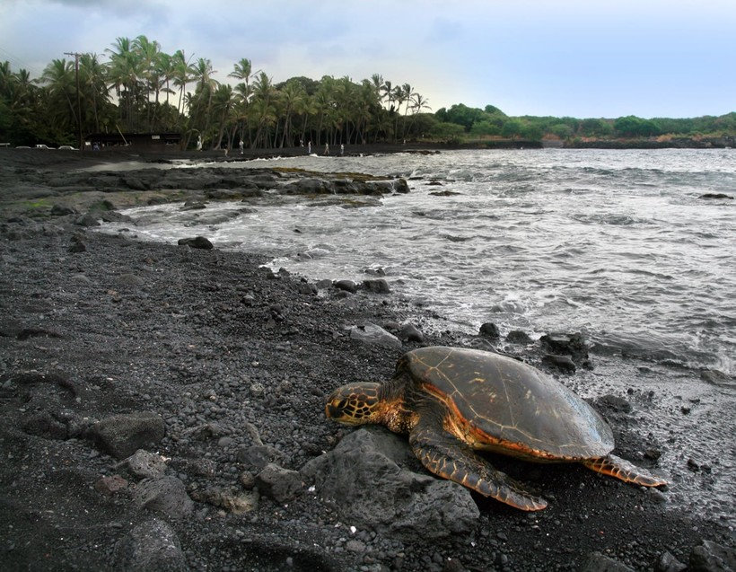 Самые опасные пляжи мира, где отдых может закончиться весьма печально