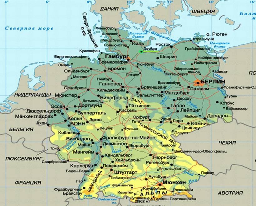 Сбежавший питомец: нанду акклиматизировались на севере Германии и угрожают фермерам