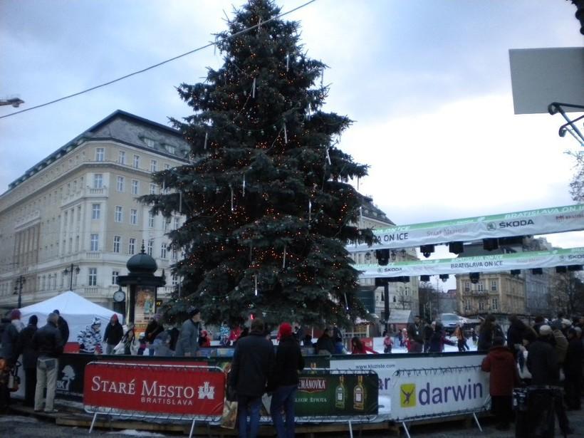 Ёлки стоят по всей столице Словакии