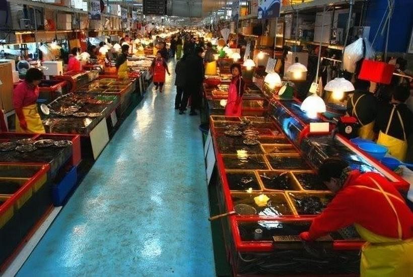 Начало дня на одном из рыбных рынков Сеула.