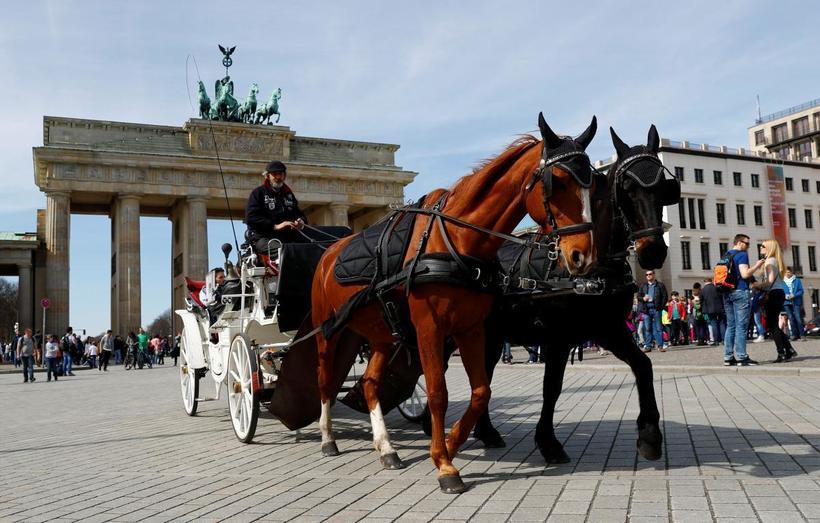 Берлин: знакомство с городскими красотами