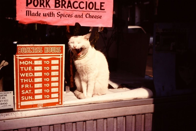 Нью-Йорк 35 лет назад: как выглядел самый густонаселенный город США в 1980-х