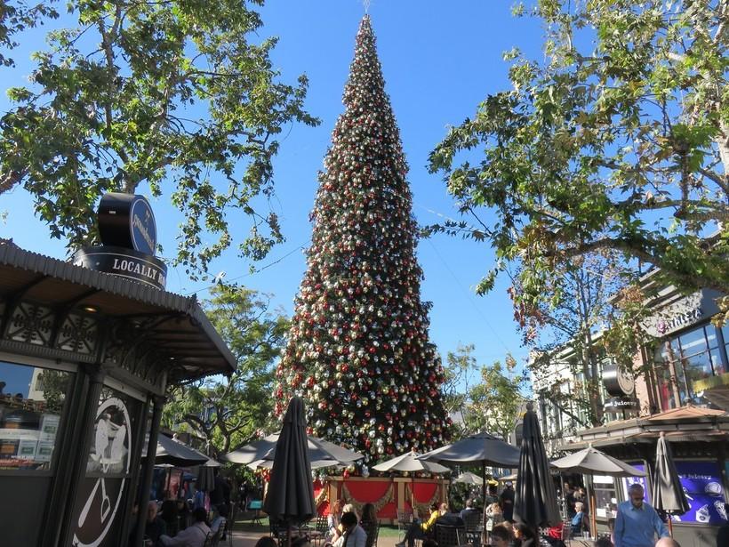 Новый год и Рождество в Лос-Анджелесе, январь 2019