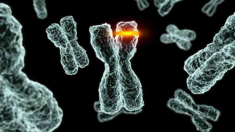 самые страшные мутации человека