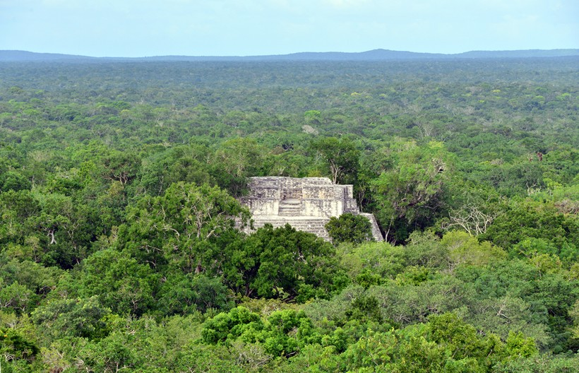 Калакмуль — древний город майя, который захватывают джунгли