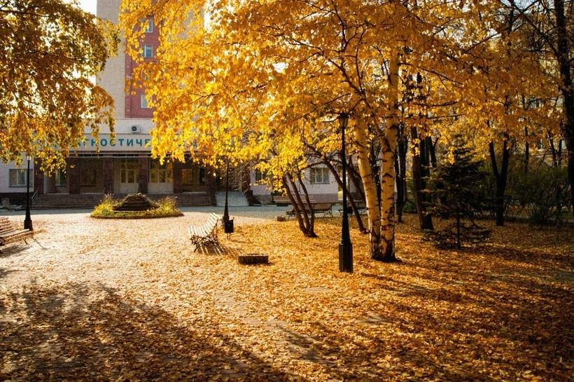 Осенняя улица в Хабаровске