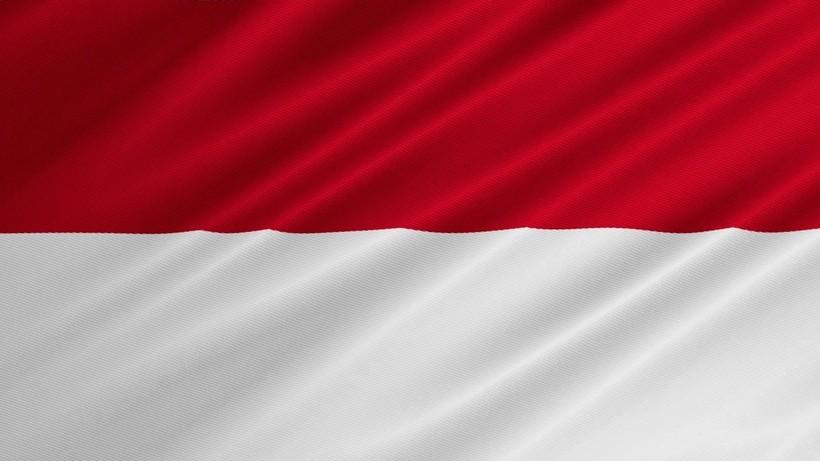 Флаг Индонезии и Монако
