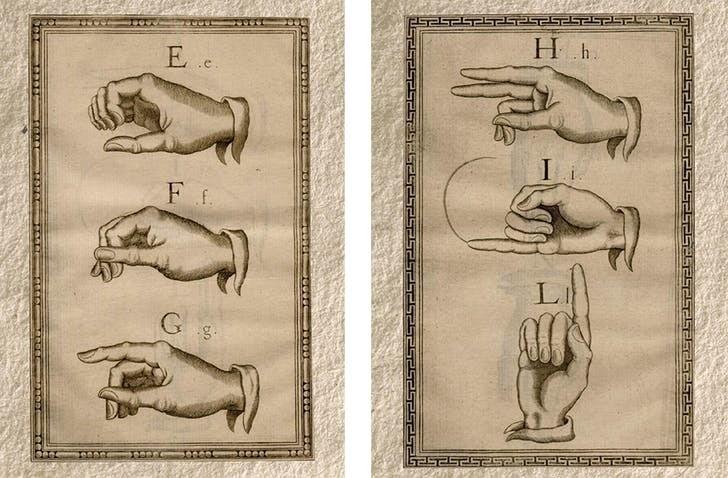 Алфавит Бонета
