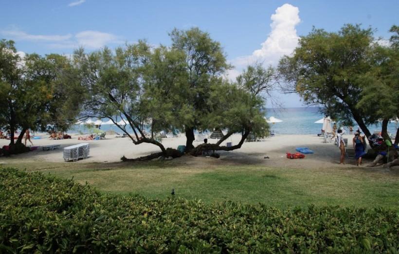 Бунгало Pallini beach