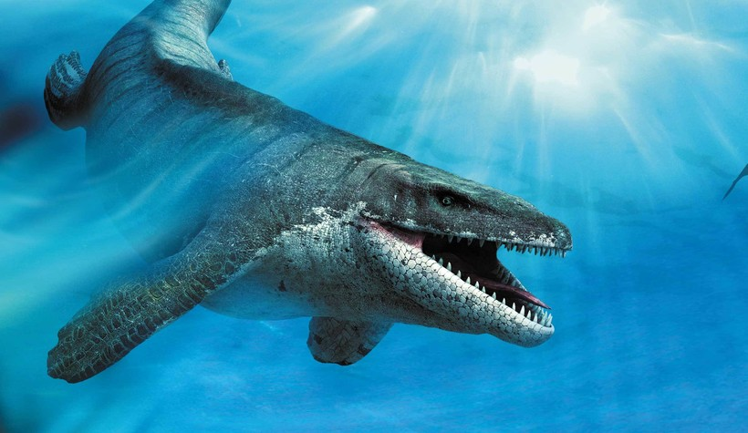 Чиксулуб: огромный след метеорита, по вине которого наступил конец эры динозавров