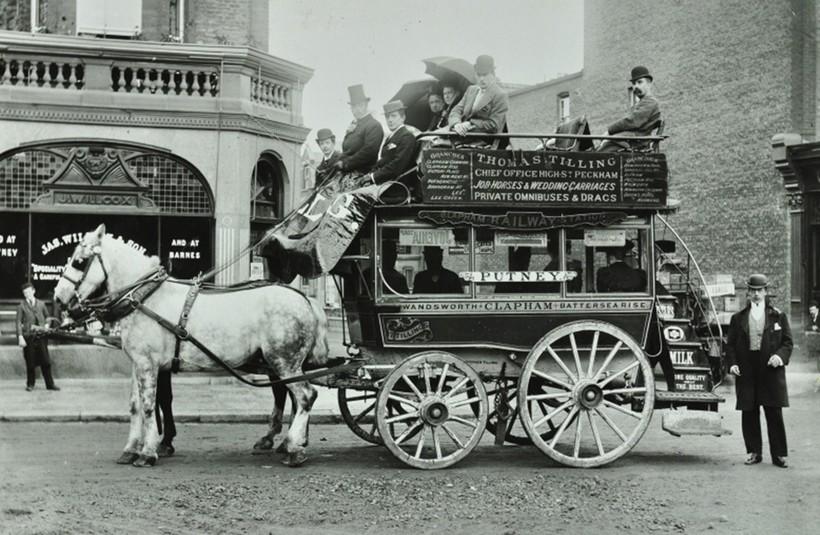 Первые автобусы