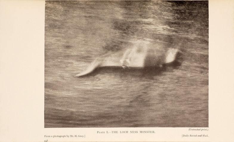 Первая фотография Лох-Несского чудовища