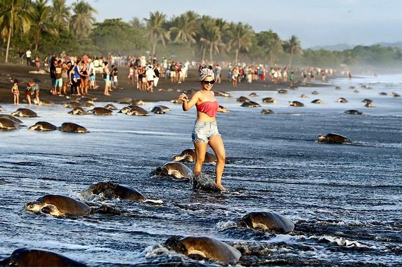 Самые скандальные выходки туристов, лишившие мир изумительных достопримечательностей