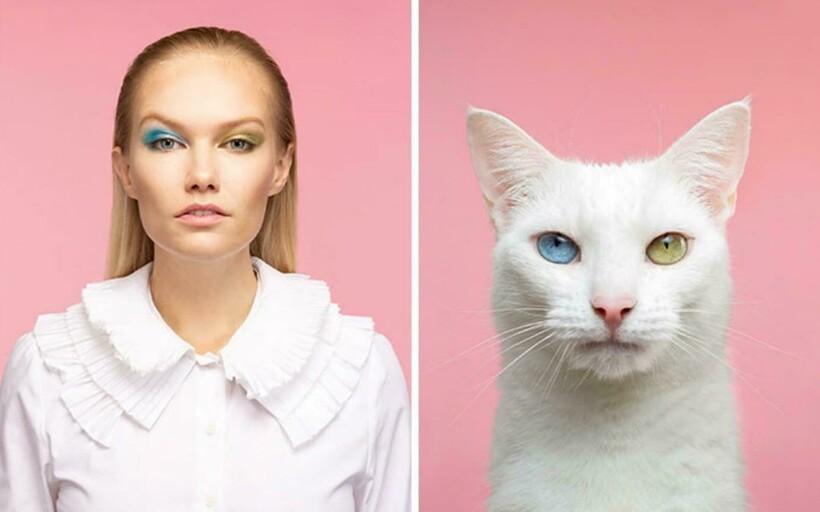 15 забавных фотопар котов и хозяев, показывающие их удивительное сходство