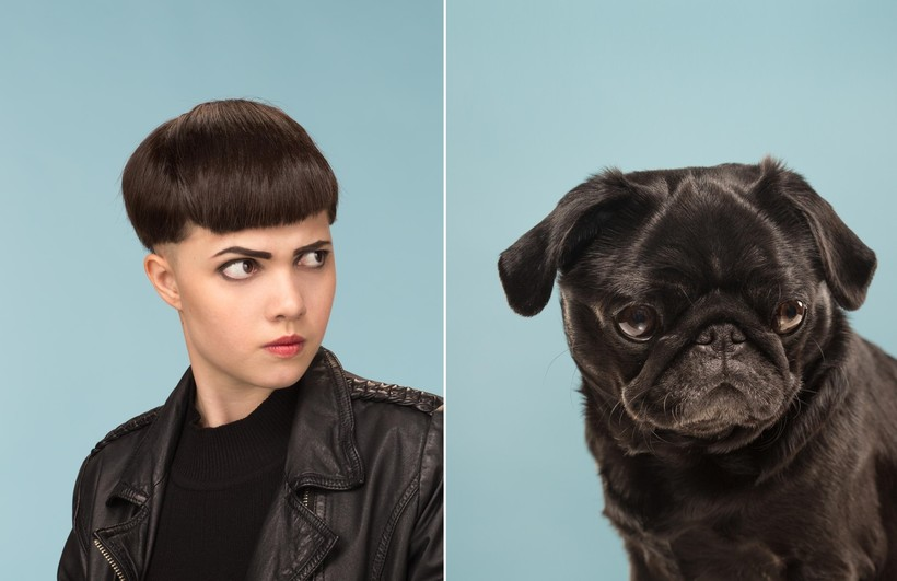 Необычный фотопроект британца, который показывает, насколько похожи собаки и хозяева