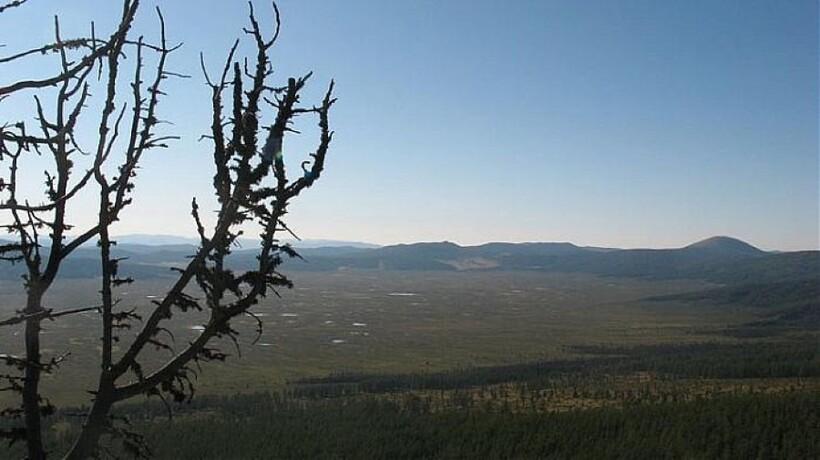 Тюгурюкское болото