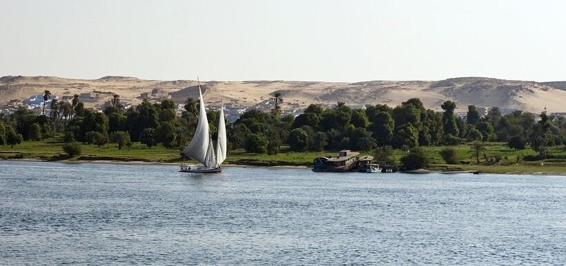Богатая растительность Нила
