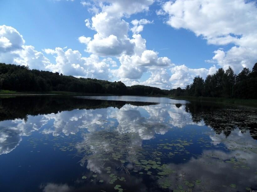 Озеро в Брестской области