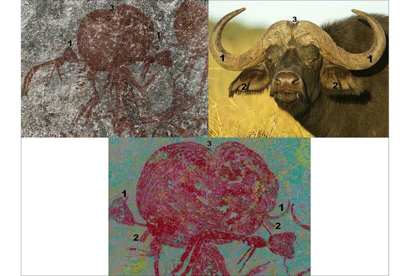 Возможно, это головы буйволов или головные уборы
