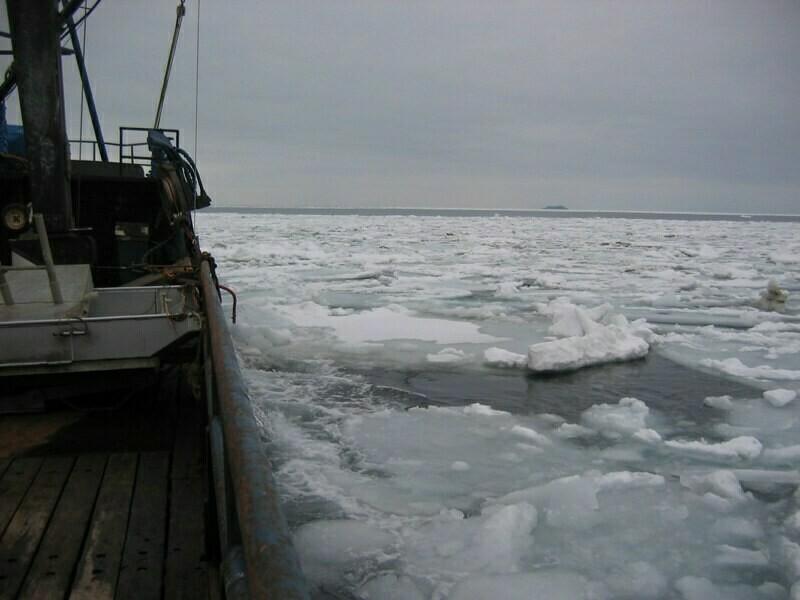 Замерзшее Берингово море