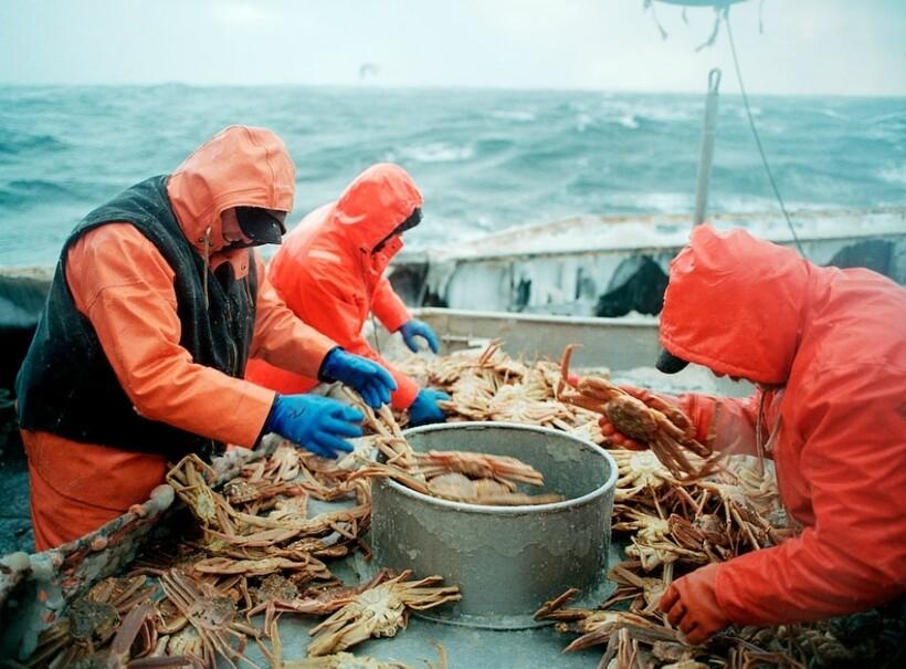 Рыболовство в Беринговом море