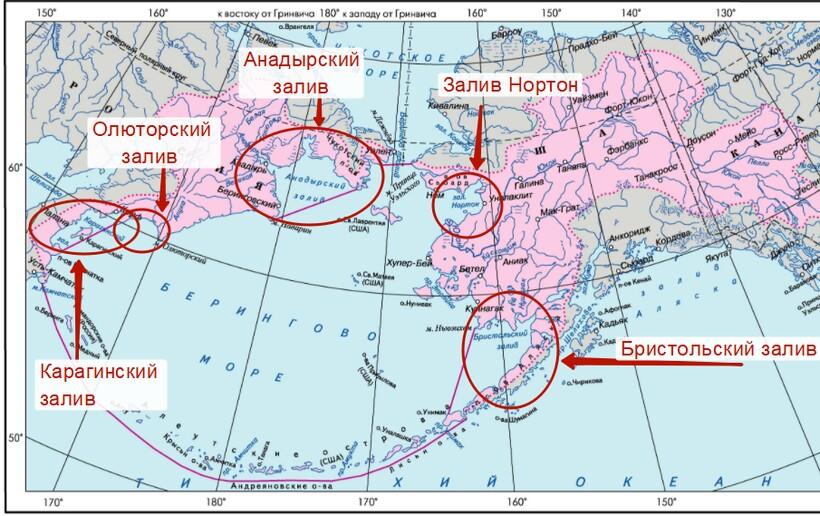 Заливы Берингова моря