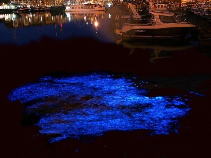 10 потрясающих фото заливов, которые ночью выглядят как порталы в иные миры