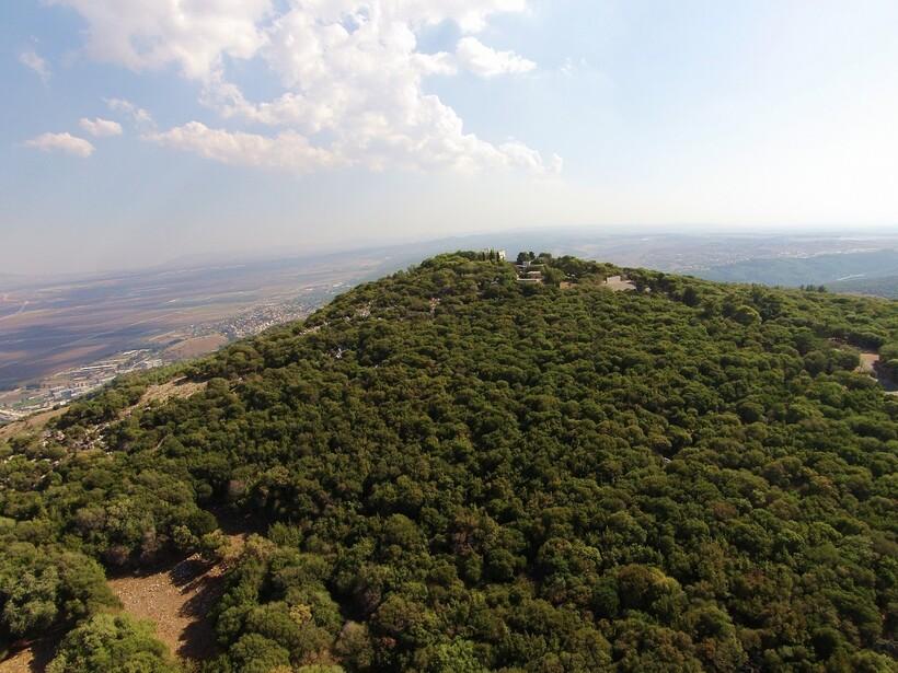 Поросшие лесом склоны горы Кармель