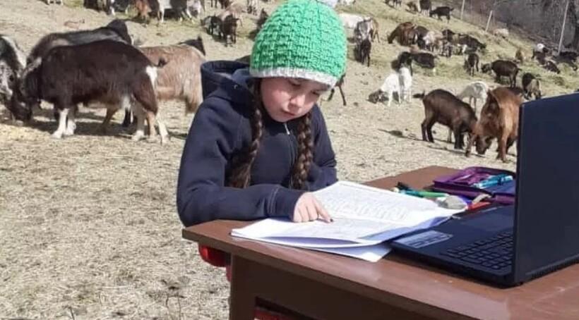 Фиамметта учится прямо на альпийском лугу