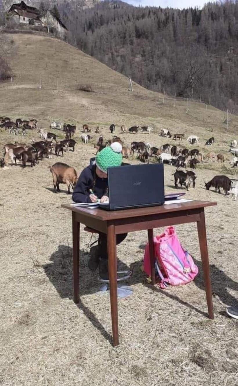 Девочка говорит, что учеба на природе делает ее счастливее