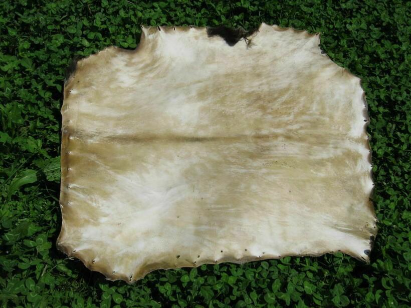 Раньше овчина была хорошим материалом для изготовления из нее пергамента