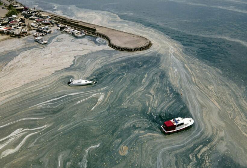 Так выглядит крик о помощи от Мраморного моря
