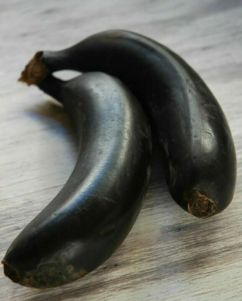 Фиолетовые и в полоску: 15 самых необычных видов бананов