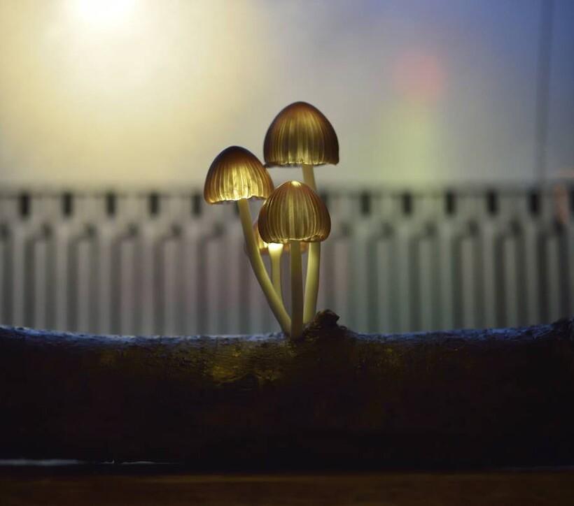 Киты, грибы и абстракция: 5 впечатляющих художественных проектов из эпоксидной смолы