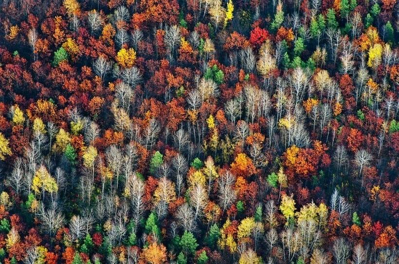 10 мест на планете, где природа не пожалела красок