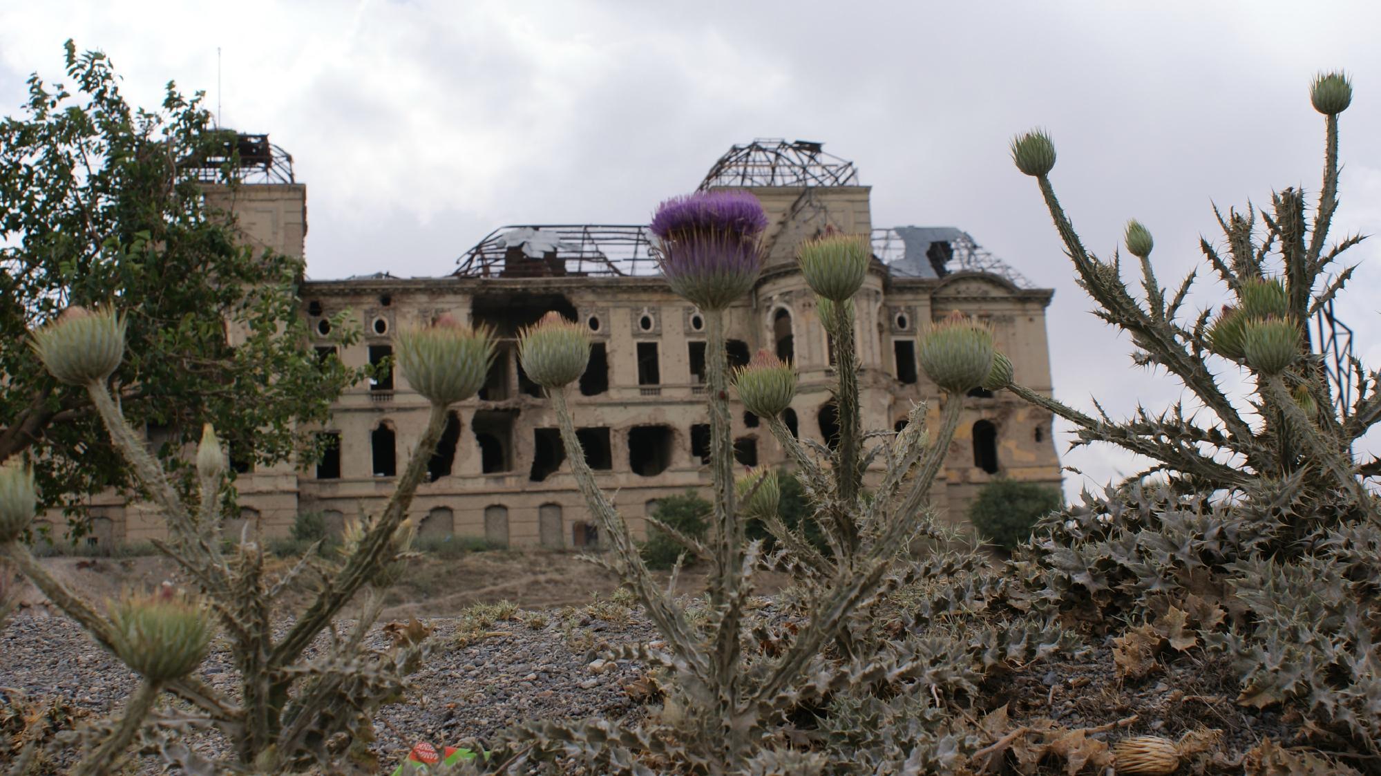 Дворец «Дар уль-Аман»
