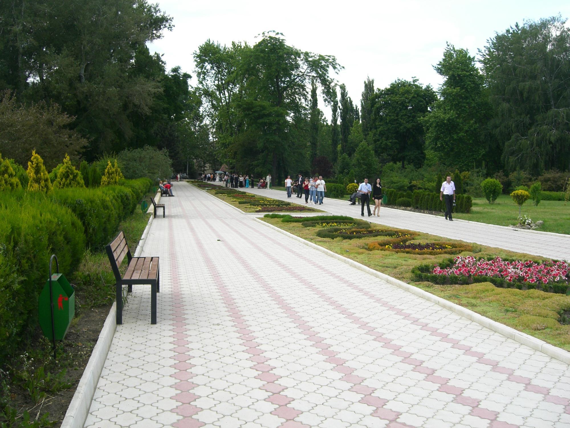 Парк Дендрарий