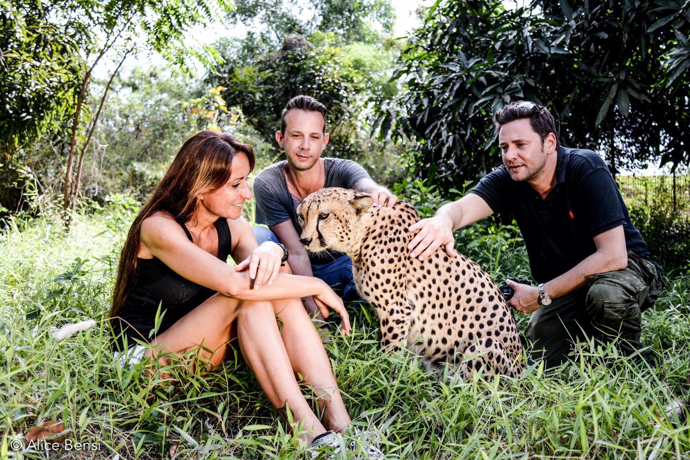 Зоопарк Cheetah's Rock