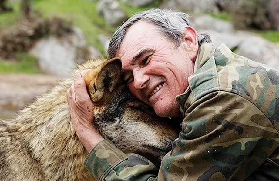 Есть ли жизнь у Маугли: испанец провел 12 лет с волками и вернулся в мир людей
