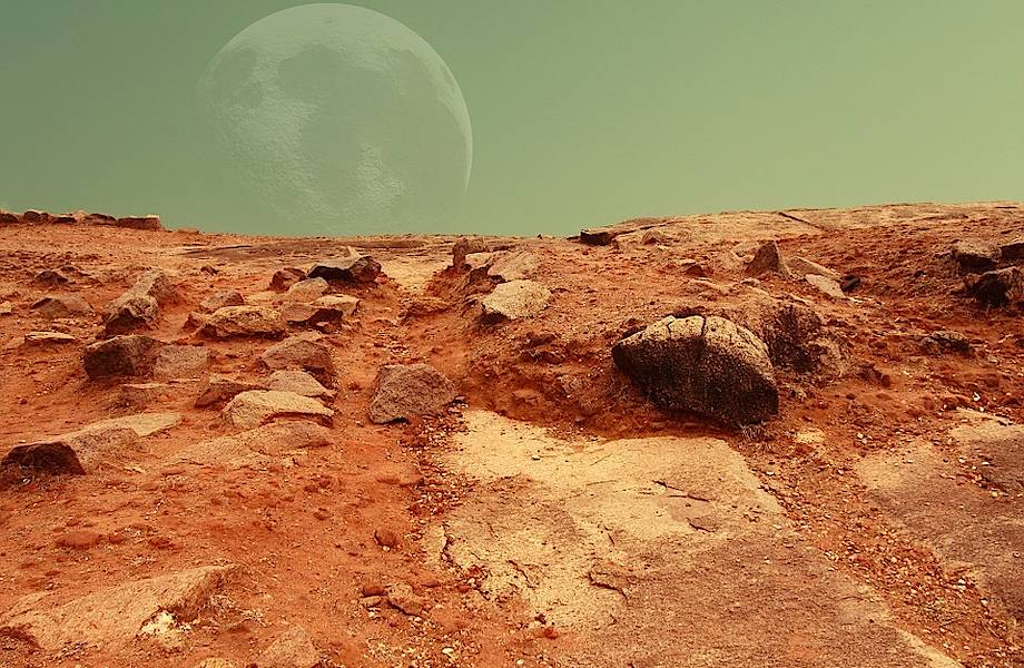 От панорам Диснейленда до Марса: семь отличных сервисов, чтобы скрасить карантин