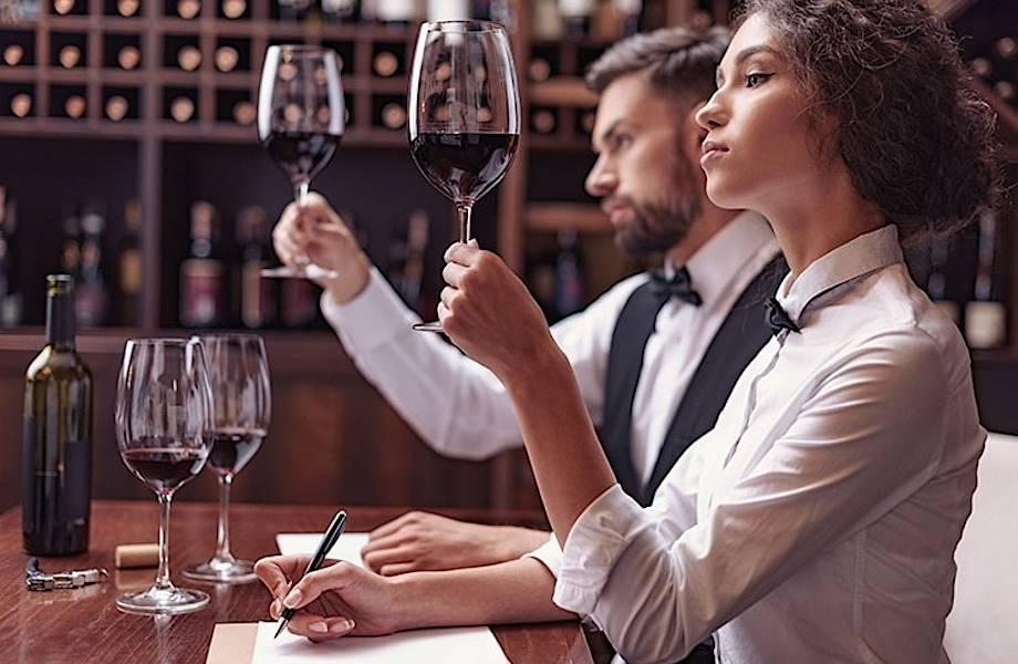 Как слуги, обнаруживающие яд, стали специалистами по вину: история сомелье