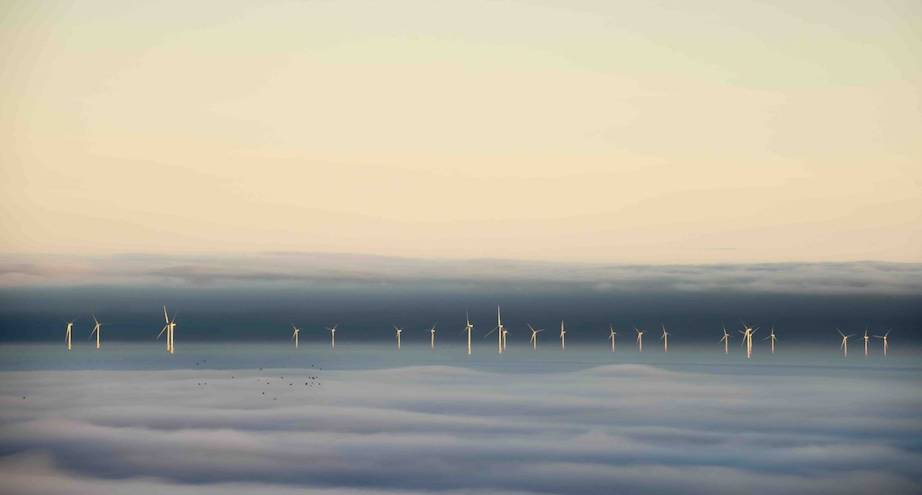 Фото дня: ветряная электростанция