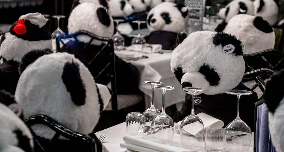 Фото дня: панды вместо посетителей ресторана во Франкфурте