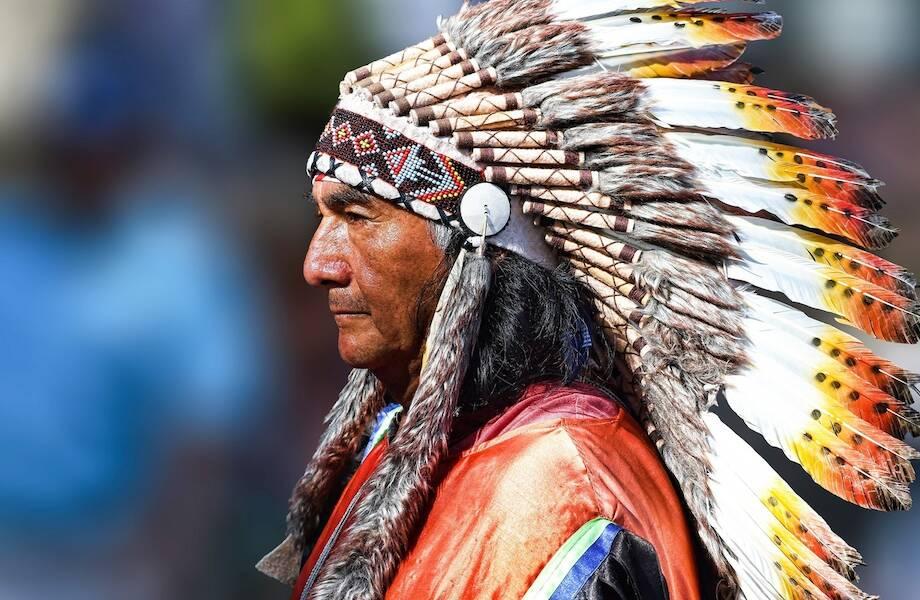 Почему индейцев всегда изображают без бороды и усов