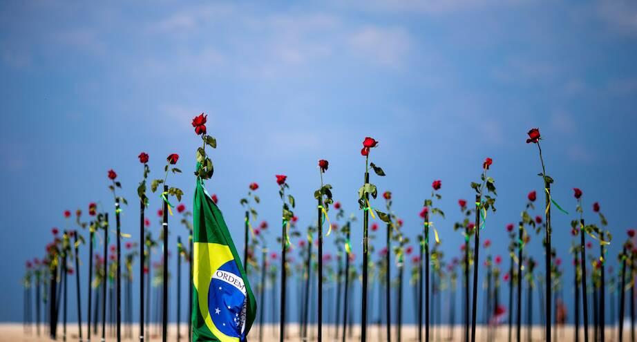 Фото дня: розы на пляже в Рио-де-Жанейро