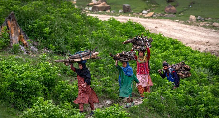 Фото дня: жители Кашмира несут дрова
