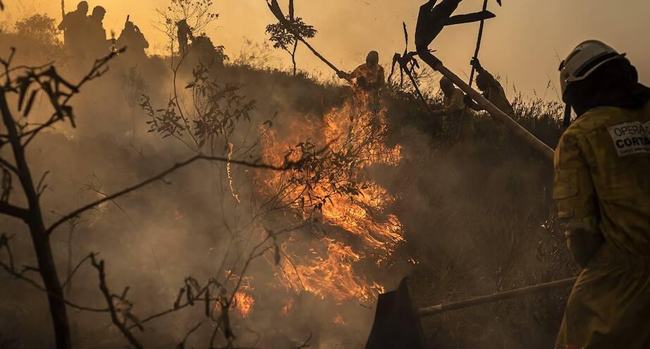 Фото дня: пожар в бразильском парке, вызванный китайским фонариком