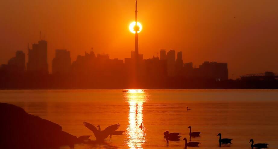 Фото дня: утро над Торонто